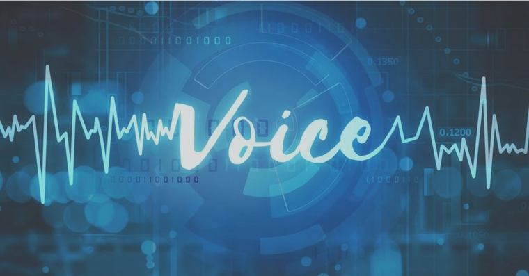 Voice Scan Analysis
